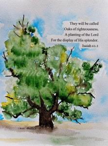 oak righteousness web