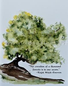 emerson oak tree2 (1 of 1)