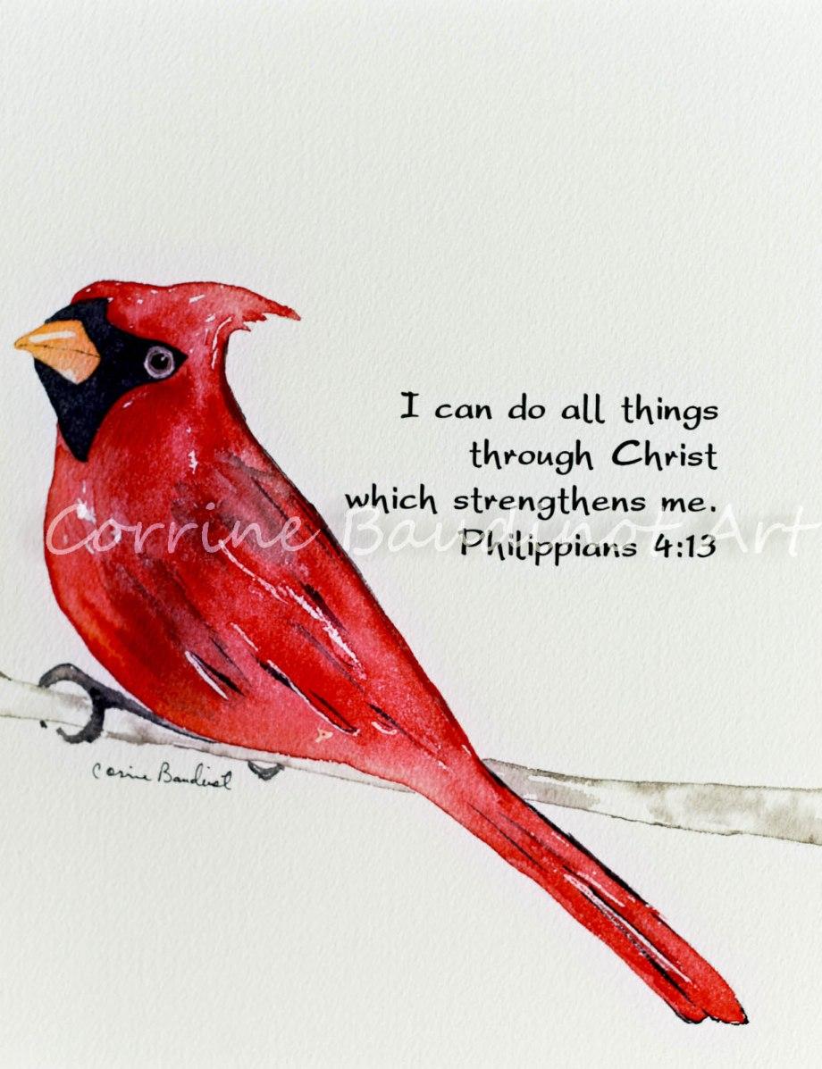 redbird1 (1 of 1)