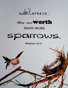 sparrow3_1
